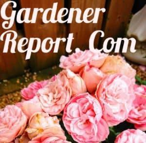 Gardener report logo