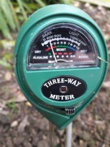 Camellia soil pH