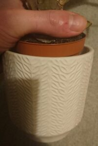 Decorative pots without drainage holes in the base.
