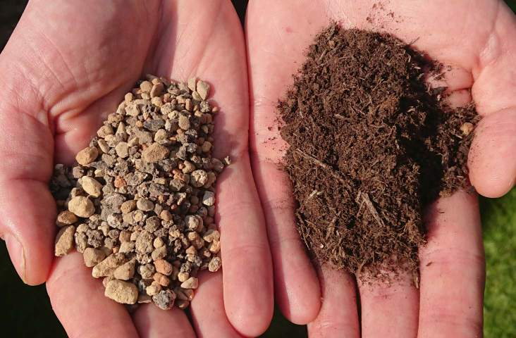 Specially formulated succulent and cacti soil on the left which is optimal for aloe vera compared to ordinary potting soil on the right which retains too much moisture.